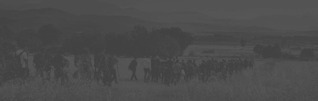 Les migracions a Europa:<br>reptes i propostes